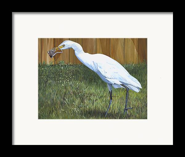 Cattle Egret Framed Print featuring the painting Eye To Eye by AnnaJo Vahle