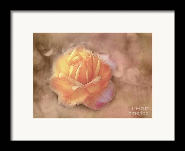 Rose Framed Print featuring the photograph Faded Memories by Judi Bagwell
