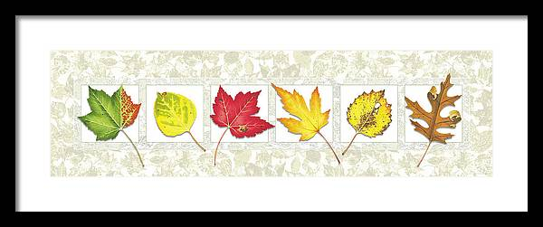 Jon Q Wright Framed Print featuring the painting Fall Leaf Panel by JQ Licensing