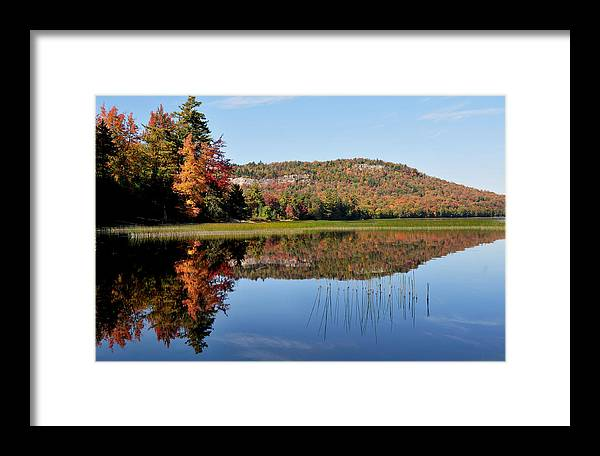 Lake Lila Framed Print featuring the photograph Fall On Lake Lila by Peter DeFina