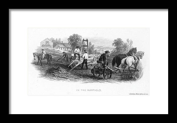 1870 Framed Print featuring the photograph Farming, C1870 by Granger