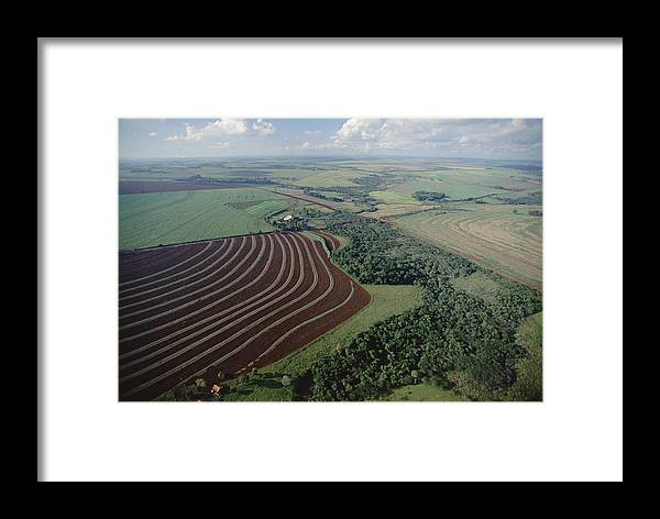 Mp Framed Print featuring the photograph Farming Region With Forest Remnants by Claus Meyer