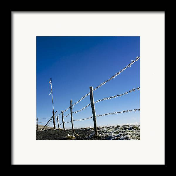 Wire Framed Print featuring the photograph Fence Covered In Hoarfrost In Winter by Bernard Jaubert