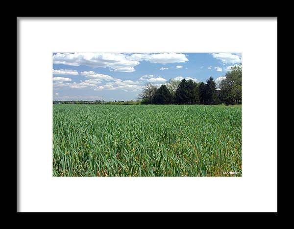 Delaware Framed Print featuring the photograph Field Of Green by Mark Holden
