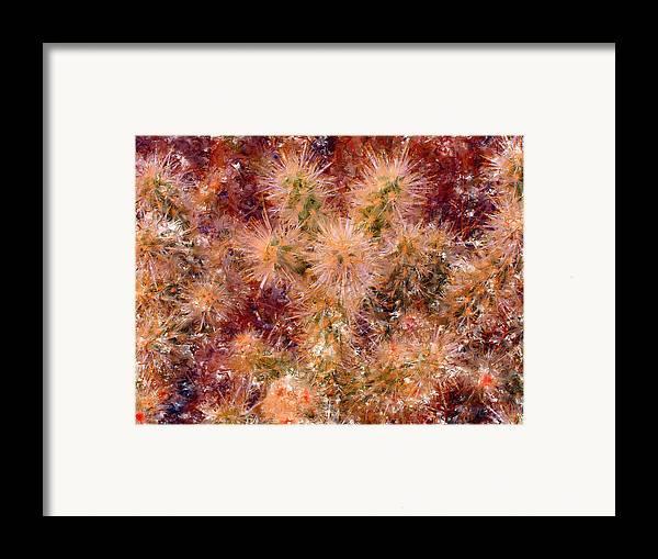 Fireworks Framed Print featuring the digital art Fireworks Explosion by Marilyn Sholin