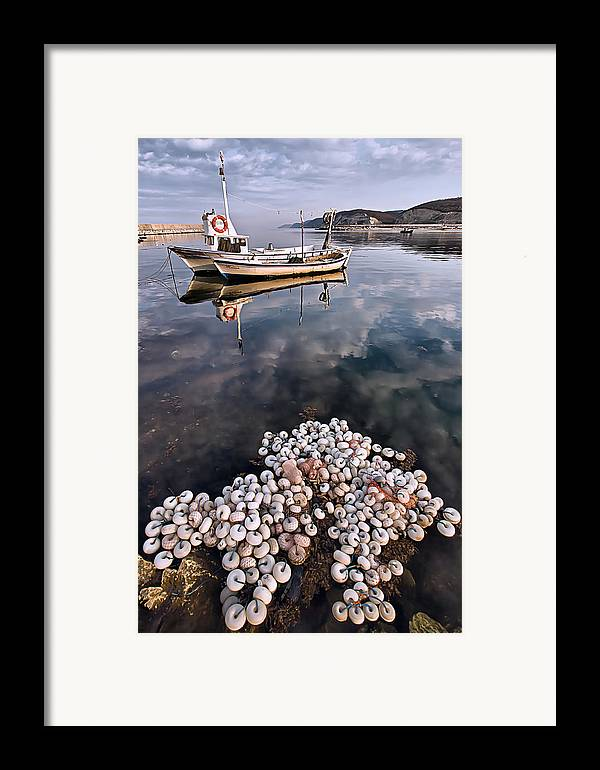 Fish Framed Print featuring the photograph Fishing - 7 by Okan YILMAZ