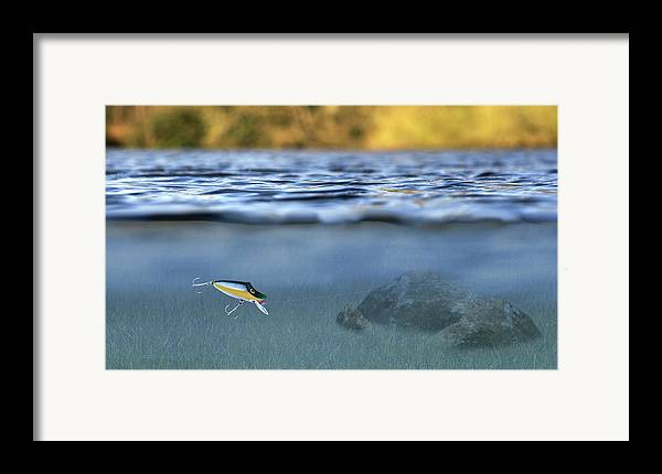 Lure In Use Framed Print featuring the photograph Fishing Lure In Use by Meirion Matthias