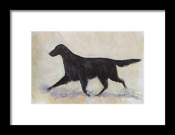 Flat Coat Retriever Framed Print featuring the painting Flatcoat Retriever by Ron Hevener