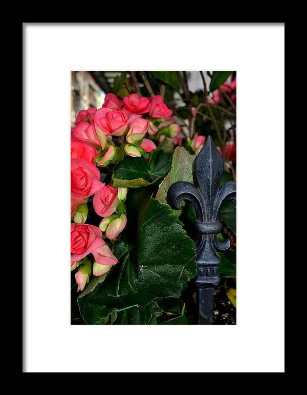 New Orleans Framed Print featuring the photograph Fleur De Lis by Lyndi Heckaman
