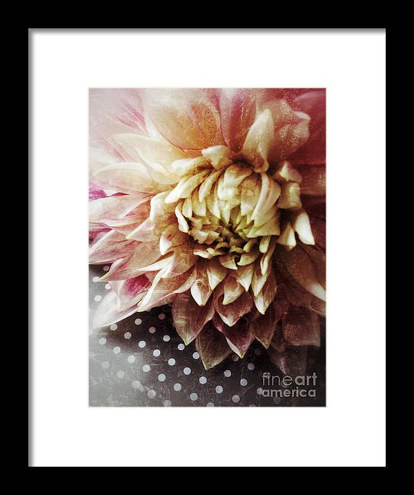 Dahlia Framed Print featuring the photograph Flower On Black And White Polka Dots by Ruby Hummersmith