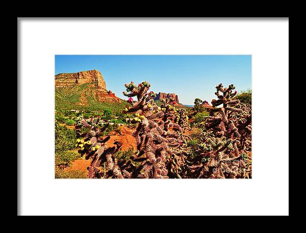 Sedona Framed Print featuring the photograph Flowering Cactus Framing The Sedona Landscape by George Sylvia