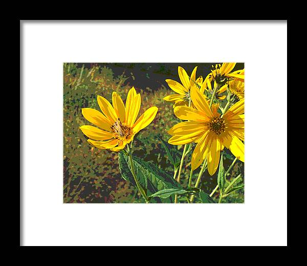 Grasshoppers Framed Print featuring the photograph Flowers And Hopper by Jennifer Kelly