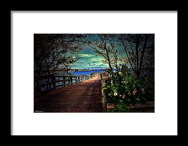 Flowers Framed Print featuring the photograph Flowers By The Pier by Mikki Cucuzzo