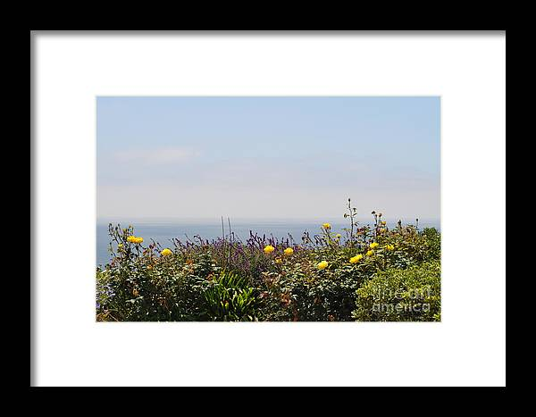Flowers By Ocean Framed Print featuring the photograph Flowerview by Nicky Dou