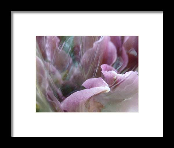 Flowers Framed Print featuring the photograph Flowing by Paul Gladden