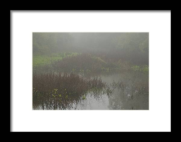 Fog Framed Print featuring the photograph Foggy Morning by Andy Blake