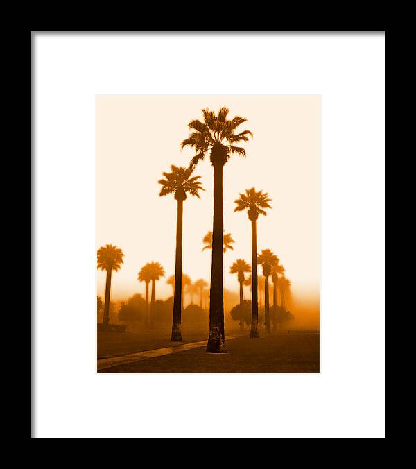 Framed Print featuring the photograph Foggy Sunrise by Jim Painter