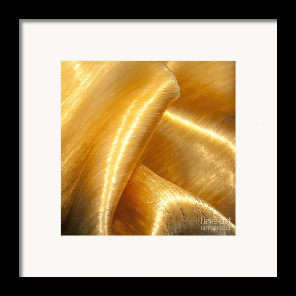Art Glass Framed Print featuring the photograph Folding Gold by Artist and Photographer Laura Wrede