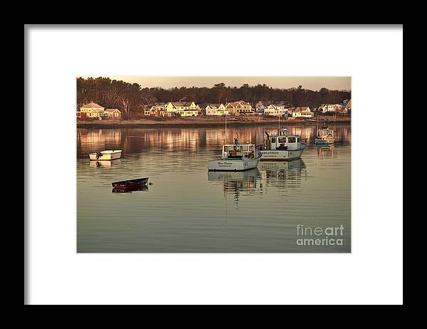Cape Porpoise Framed Print featuring the photograph Follow the Leader by Brenda Giasson