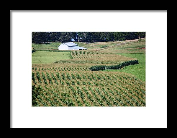 Grain Framed Print featuring the photograph For Amber Waves Of Grain by Andrew Montgomery