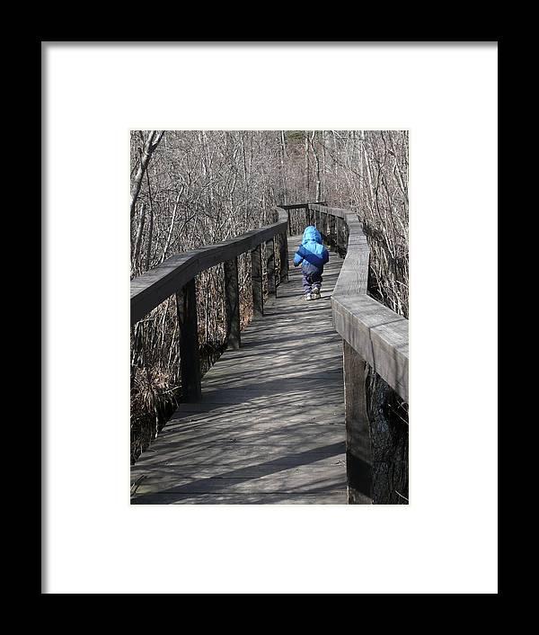 Boardwalk Framed Print featuring the photograph Forest Boardwalk In Winter by Angela Hansen