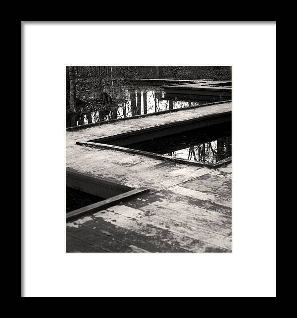 Forest Framed Print featuring the photograph Forest Path by Tammy McKinley