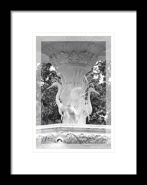 Forsyth Park Framed Print featuring the photograph Forsyth Fountain - Black And White 4 by Carol Groenen