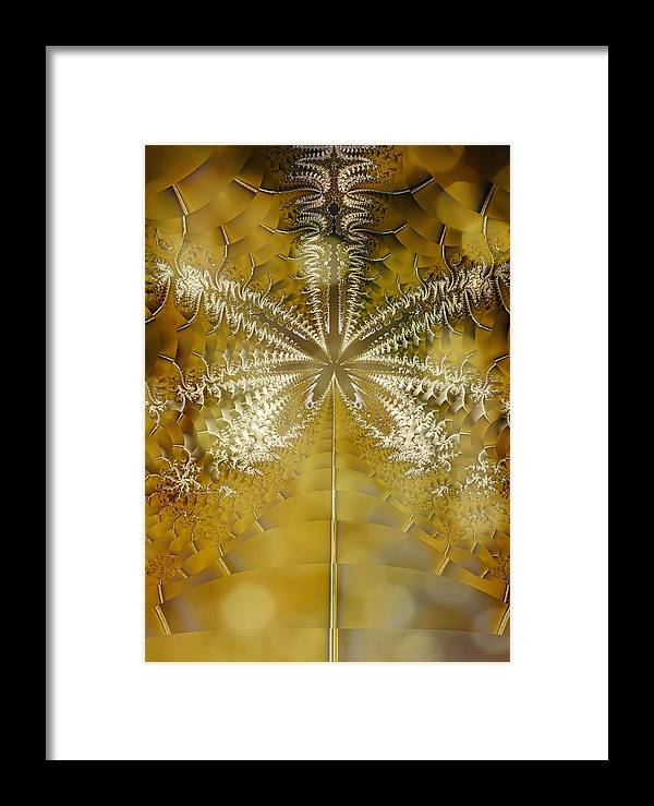 Fractal Framed Print featuring the photograph Fossil Gold by Mother Nature