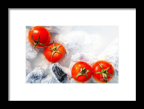 Tomatoes Framed Print featuring the photograph Four Red Tomatos by Agusta Gudrun Olafsdottir