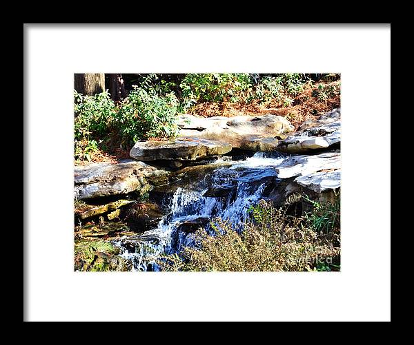 Stream Framed Print featuring the photograph Free to Stream by Debbi Granruth