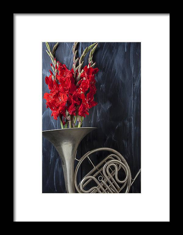 French Horn Framed Print featuring the photograph French Horn With Gladiolus by Garry Gay