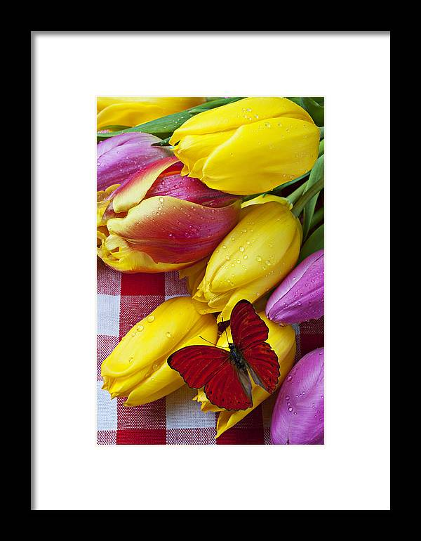 Red Framed Print featuring the photograph Fresh Tulips And Red Butterfly by Garry Gay