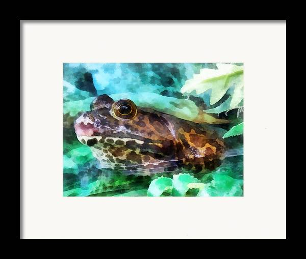 Frog Framed Print featuring the photograph Frog Ready To Be Kissed by Susan Savad