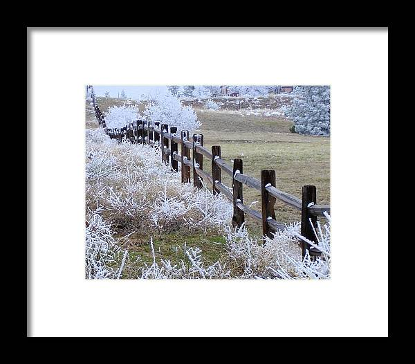Snowy Fence Framed Print featuring the photograph Frosted Fence by Laurisa Rabins