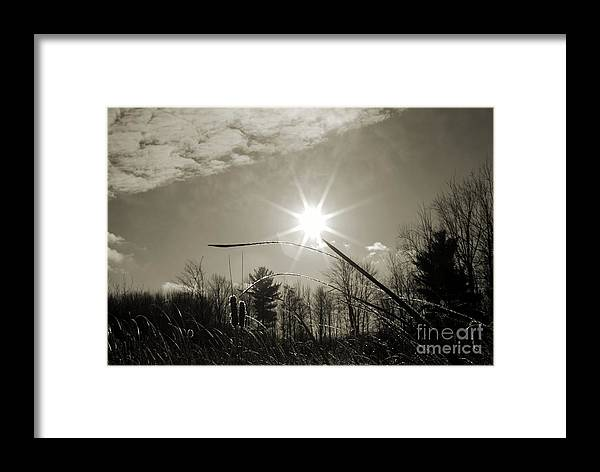 Landscape Framed Print featuring the photograph Frosty Sunrise by Crissy Sherman