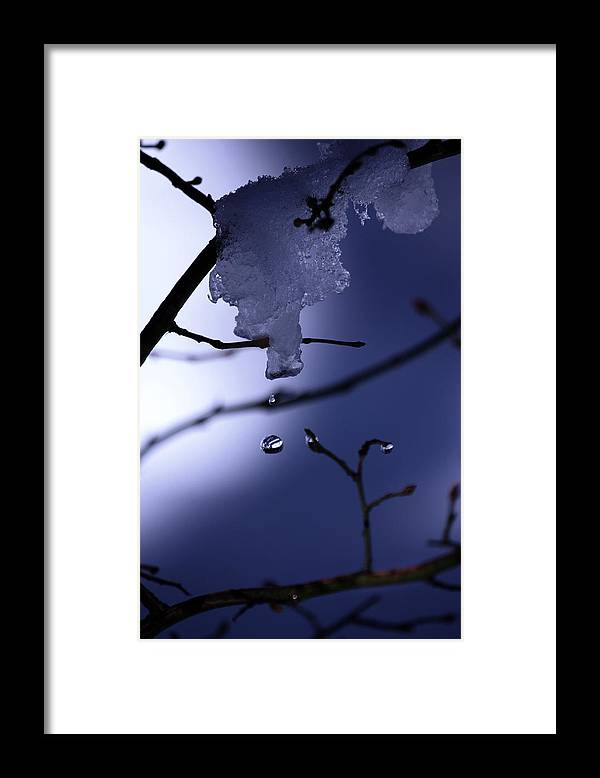 Water Drop Framed Print featuring the photograph Frozen But Still Wet by Christine Gauthier