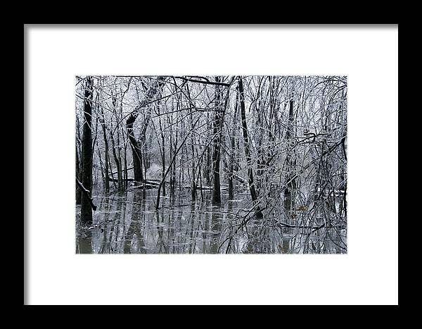 Nature Framed Print featuring the photograph Frozen Landscape 3 by Travis Garwood