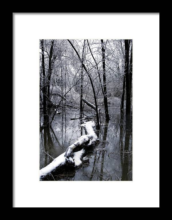 Nature Framed Print featuring the photograph Frozen Lanscape 2 by Travis Garwood