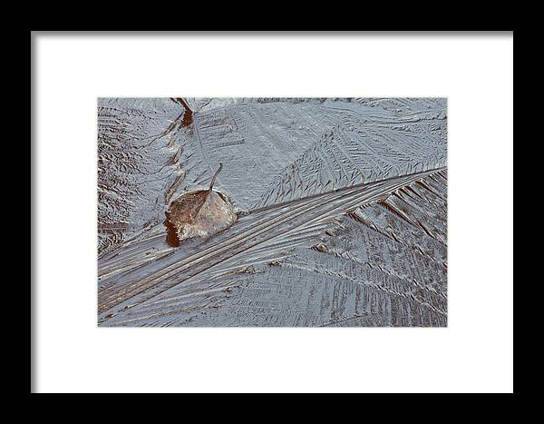 Nature Framed Print featuring the photograph Frozen Leaf by Ulrich Kunst And Bettina Scheidulin