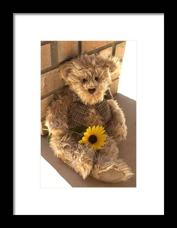 Sunflower Framed Print featuring the photograph Fuzzy Teddy by Lynnette Johns