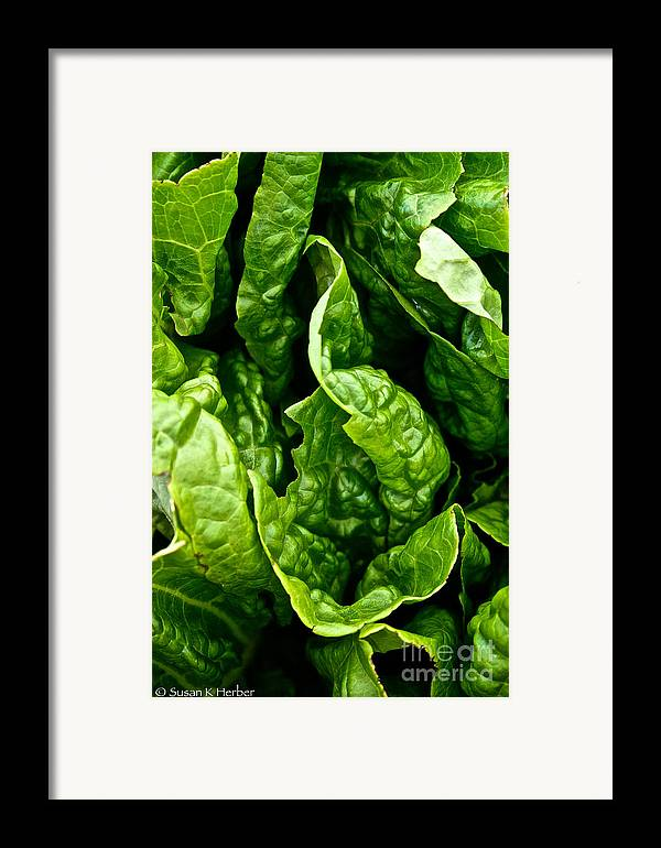 Food Framed Print featuring the photograph Garden Fresh by Susan Herber