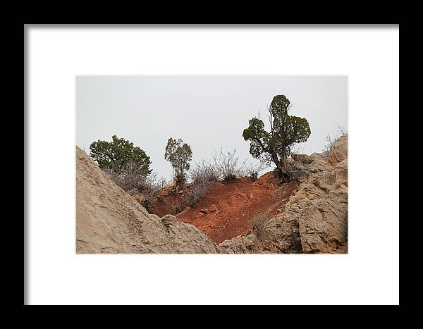 Garden Of The Gods Framed Print featuring the photograph Garden Of The Gods by Tricia Janush