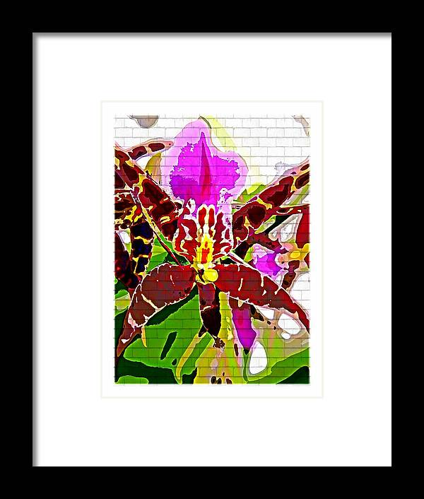 Orchid Framed Print featuring the photograph Garden Orchid by Mindy Newman