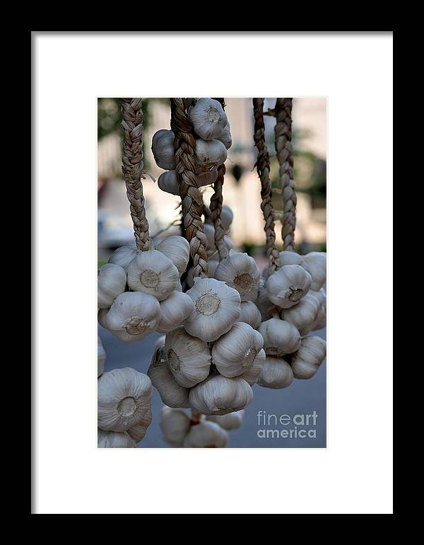 Garlic Framed Print featuring the photograph Garlic by Nicky Dou