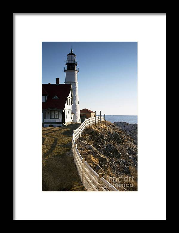 Gate Keeper Framed Print featuring the photograph Gate Keeper by Brenda Giasson