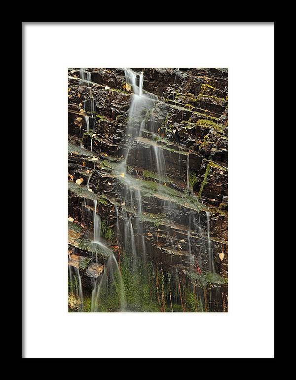 Waterfall Framed Print featuring the photograph Gentle Waterfall In Glacier National Park by Bruce Gourley