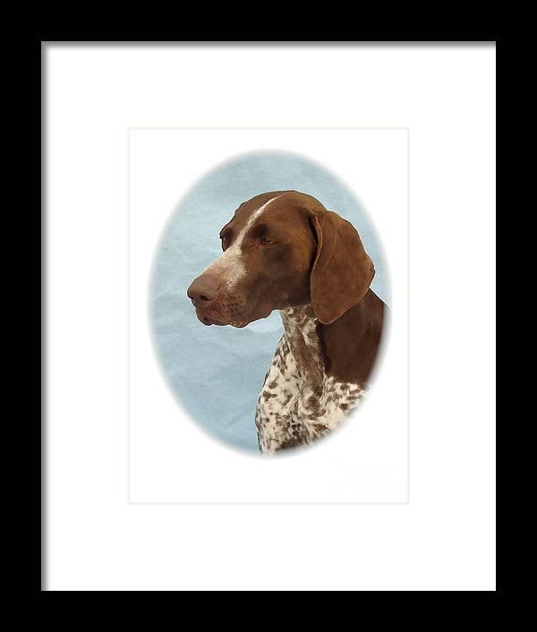 German Shorthaired Pointer Digital Art Framed Print featuring the digital art German Shorthaired Pointer 580 by Larry Matthews