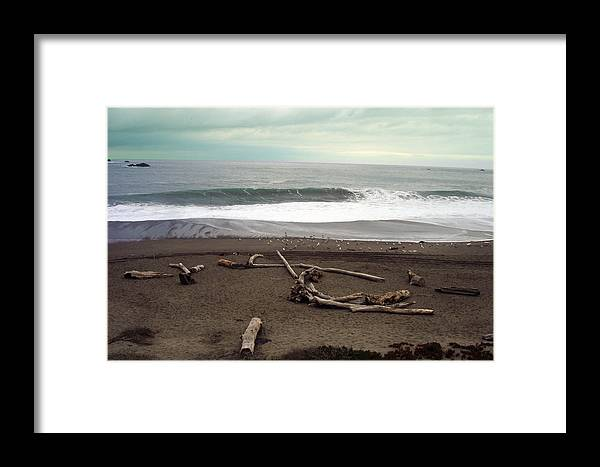 California Framed Print featuring the photograph Goat Rock Beach by Cyndi Combs