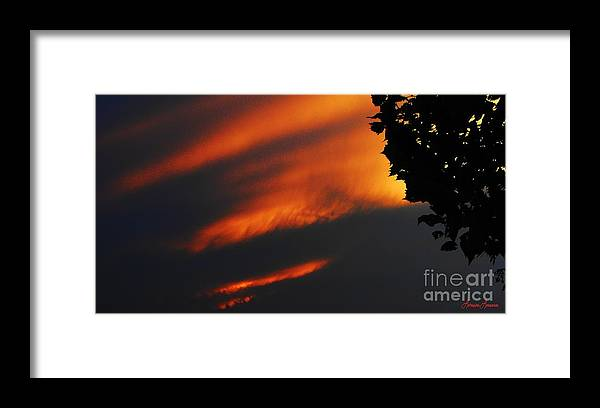 Photography Framed Print featuring the photograph God's Work Also by Lorraine Louwerse