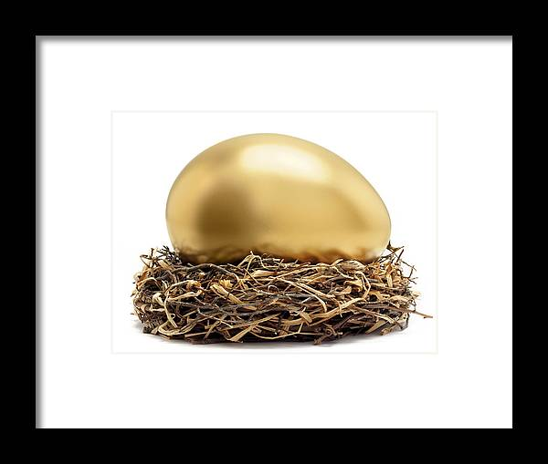 Horizontal Framed Print featuring the photograph Gold Egg In Nest by John Kuczala